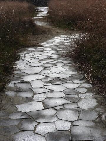 さみしい雰囲気の石畳の道