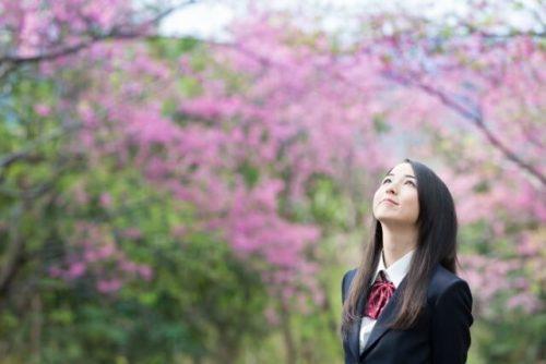 桜を眺めている女子高生