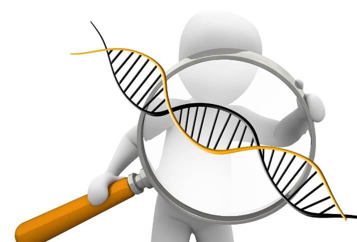 遺伝子の簡単な仕組みを解説する人