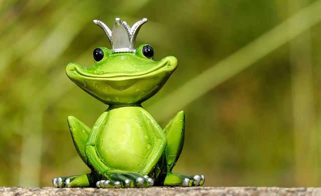 王冠をかぶったカエル